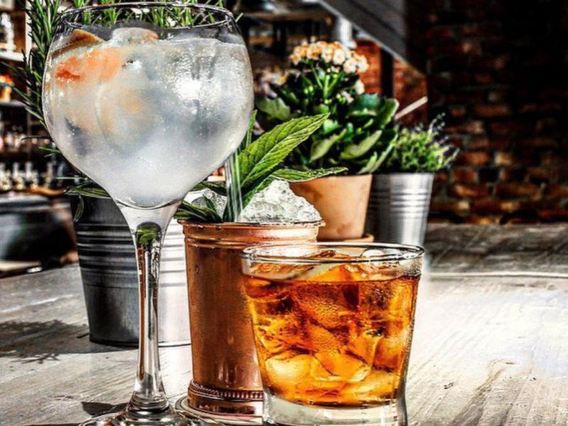 gin-image2