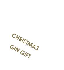 Christmas Gin Gift